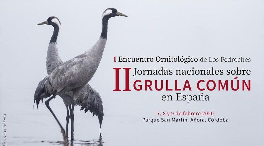 II Jornadas de la Grulla Común y I Encuentro Ornitológico 2020: Añora 7, 8 y 9 Febrero.