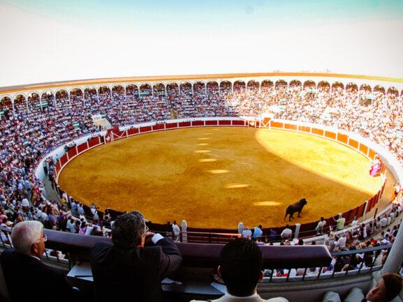 Plaza de toros Pozoblanco